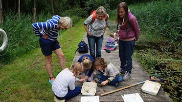 family enjoying dyke dipping at a family fun day event at how hill